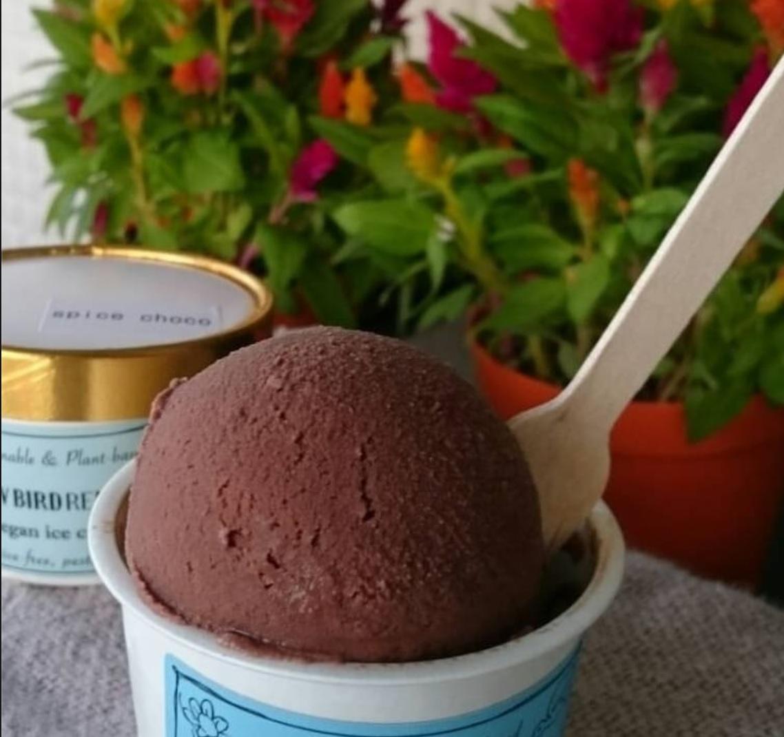 チョコアイス