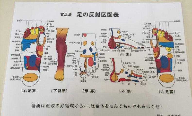 足 つぼ 膀胱 痛い 理由