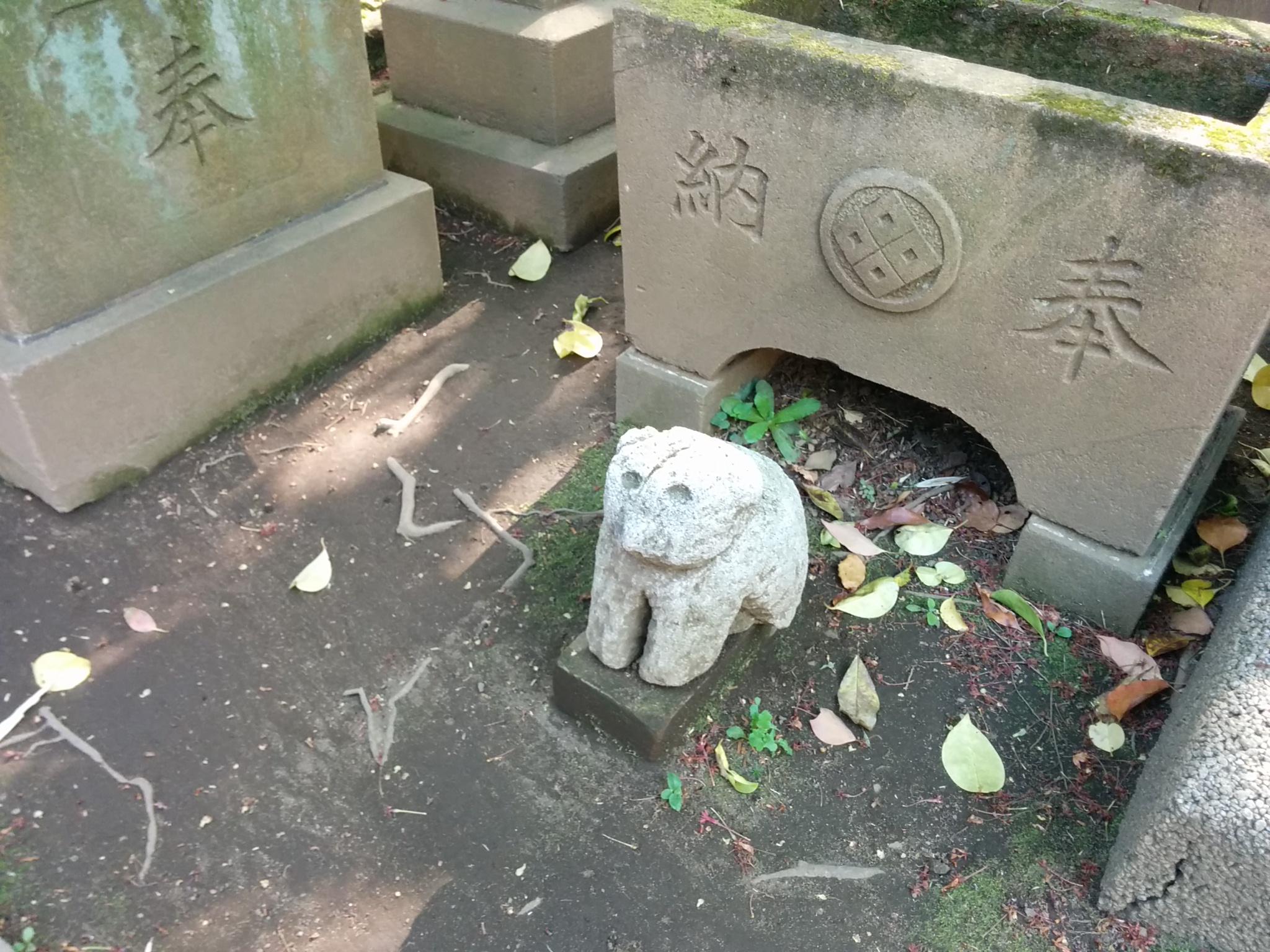 渋谷氷川神社(ちびすけ)
