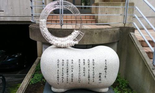 #さくら横ちょう(アイキャッチ)