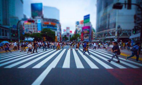 PAK93_shibuyasukuranble20130615_TP_V-790x480